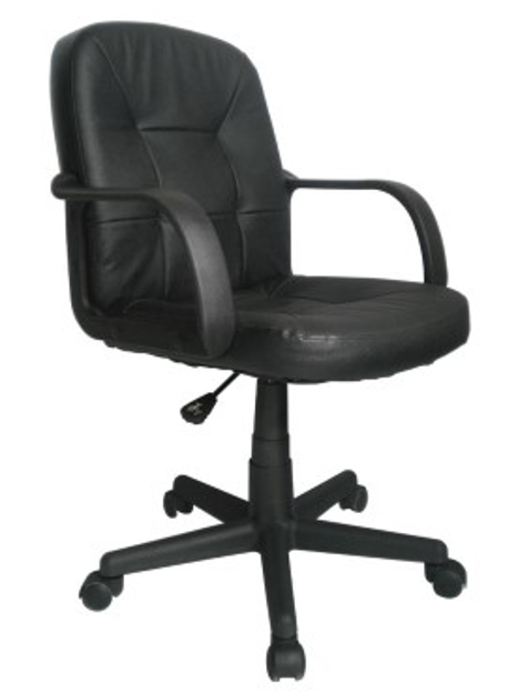 Picture of Express Delph Leather Chair