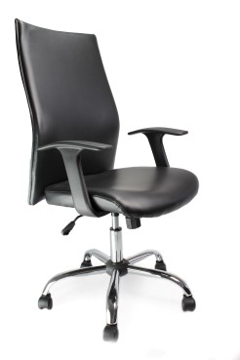 Picture of Tor Leather Chair