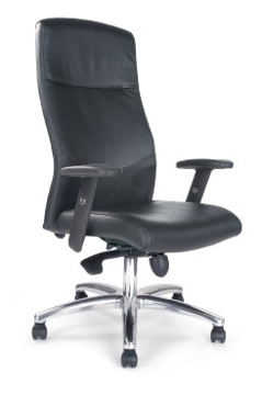 Picture of Jester Leather Chair