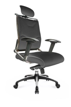 Picture of Platinum Leather Chair