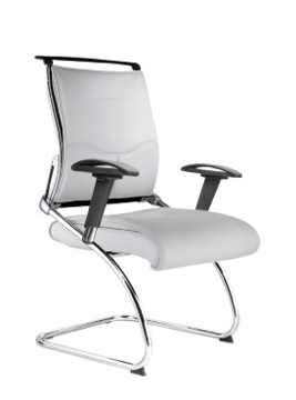 Picture of Platinum Leather Visitors Chair