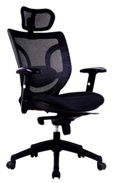 Picture of Newton Mesh Chair