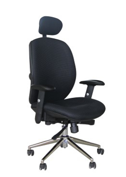 Picture of Pegasus Mesh Chair