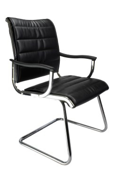 Picture of Carbis Leather Visitors Chair