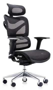 Picture of Dorsum Mesh Chair