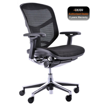 Picture of Enjoy Elite Mesh Chair