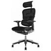 Picture of Ergohuman Elite Mesh Chair
